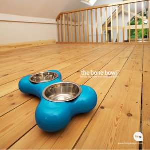 Hing Bone Dog Bowl Duo