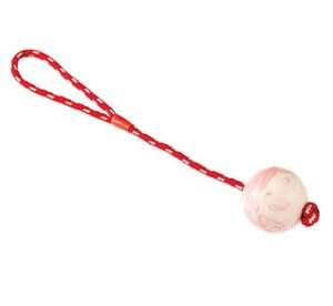 Gor Pets Gor Rubber Rope Ball Pink