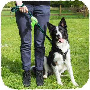 Beco Pets Beco Pocket Poo Bag Dispenser for walking