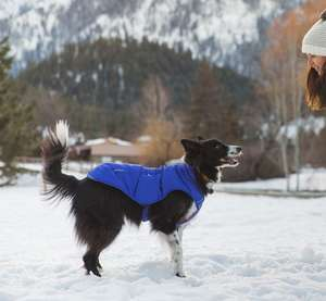 Ruffwear Quinzee Padded Jacket for Dogs