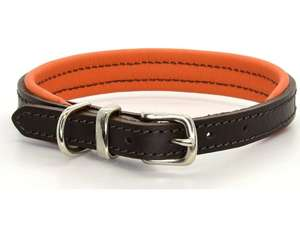 D&H Contemporary Colours Leather dog collar in orange
