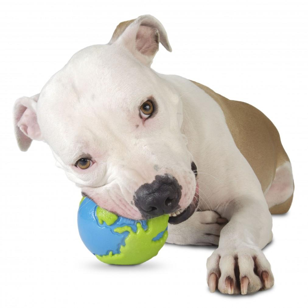 Planet Dog Orbee Tuff Orbee Ball for Strong Chewers