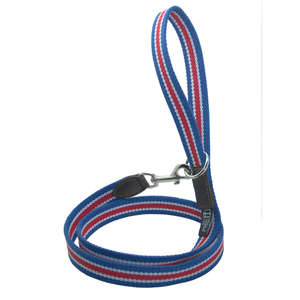 D&H Wide Striped Cotton Webbing Dog Lead - Red, Blue & White