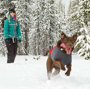 Ruffwear Powder Hound Hybrid Insulated Dog Jacket For Active Dogs