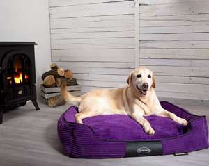 Scruffs Milan Orthopaedic Bed For LargeDogs
