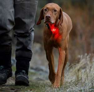 The Beacon by Ruffwear LED Collar Light