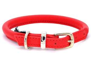 D&H Contemporary Rolled Leather Dog Collar red