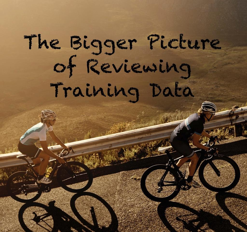 The Bigger Picture of Reviewing Training Data