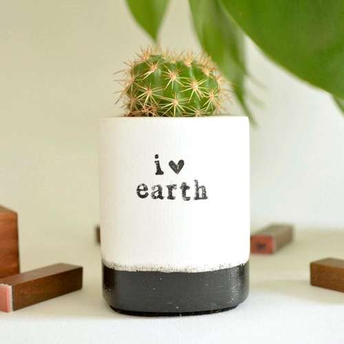 I Love Earth pot
