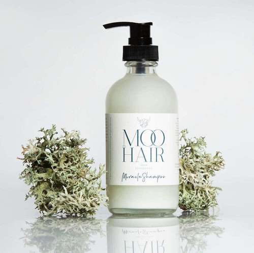 Eco-Friendly Shampoo