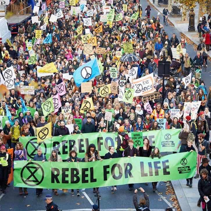 Exploring the Extinction Rebellion: What Have They Taught Us?