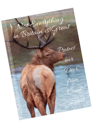 front cover of notebook with painted image of a stag next to a river. Title shows not everything in britain is great protect our deer from cruel sport.
