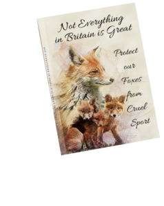 notebook with red fox watercolour painting image on front cove. Cover shows not everything in britain is great protect our foxes from cruel sport.