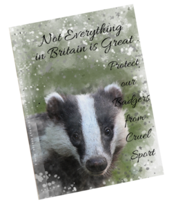 front notebook cover with water colour image of badger in black and white. Title shows not everything in britain is great protect our badgers from cruel sport