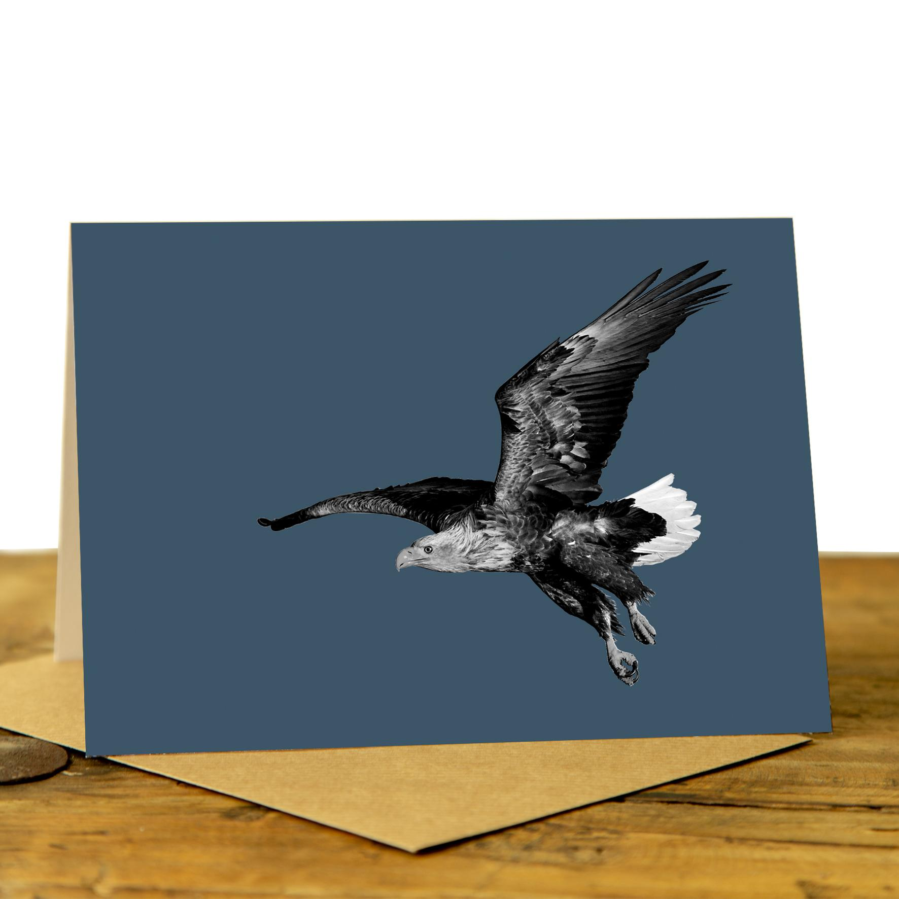 Eagle Card - Sea Eagle on Indigo
