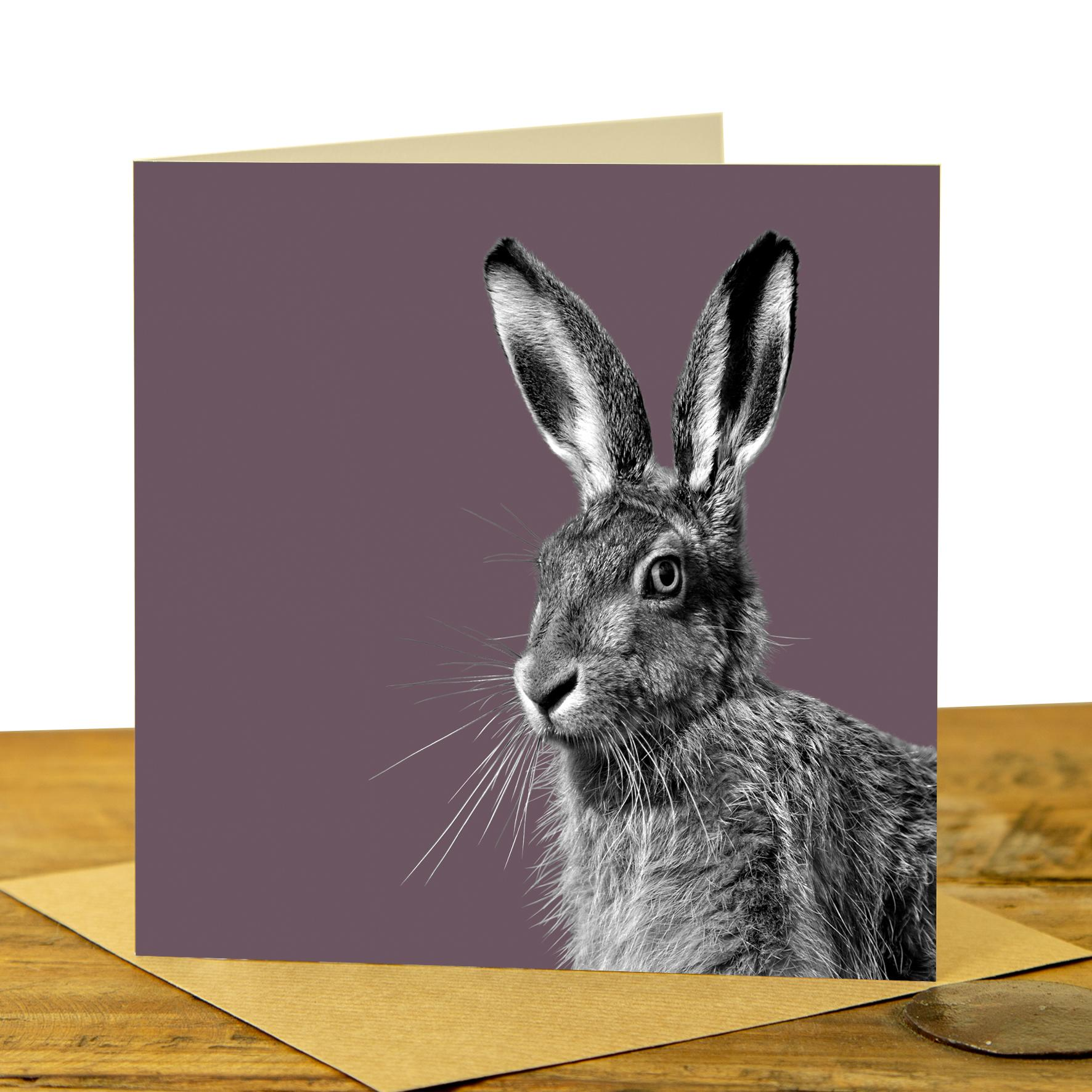 Card - Hare on Dusky Pink