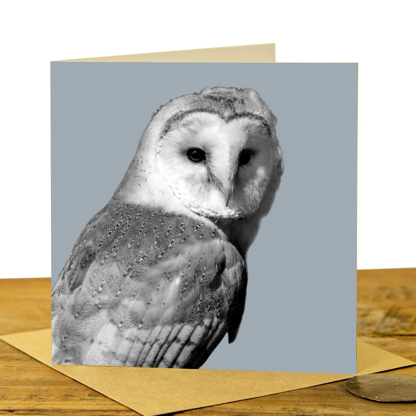 Owl Card - Barn Owl on Pale Grey