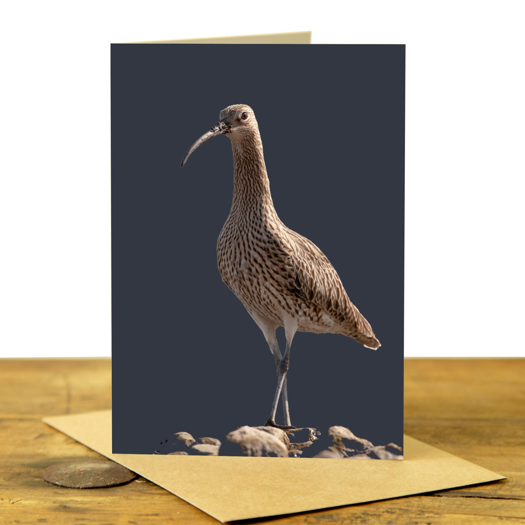 Curlew Greeting Card - Charcoal