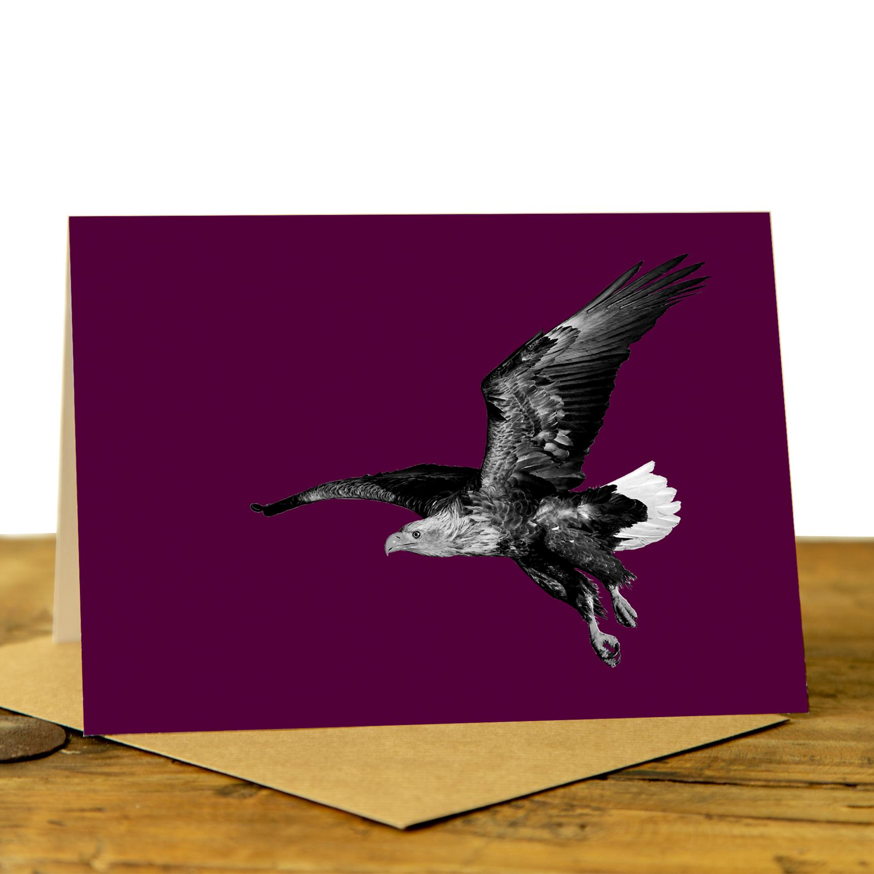 Eagle Card - Sea Eagle on Claret