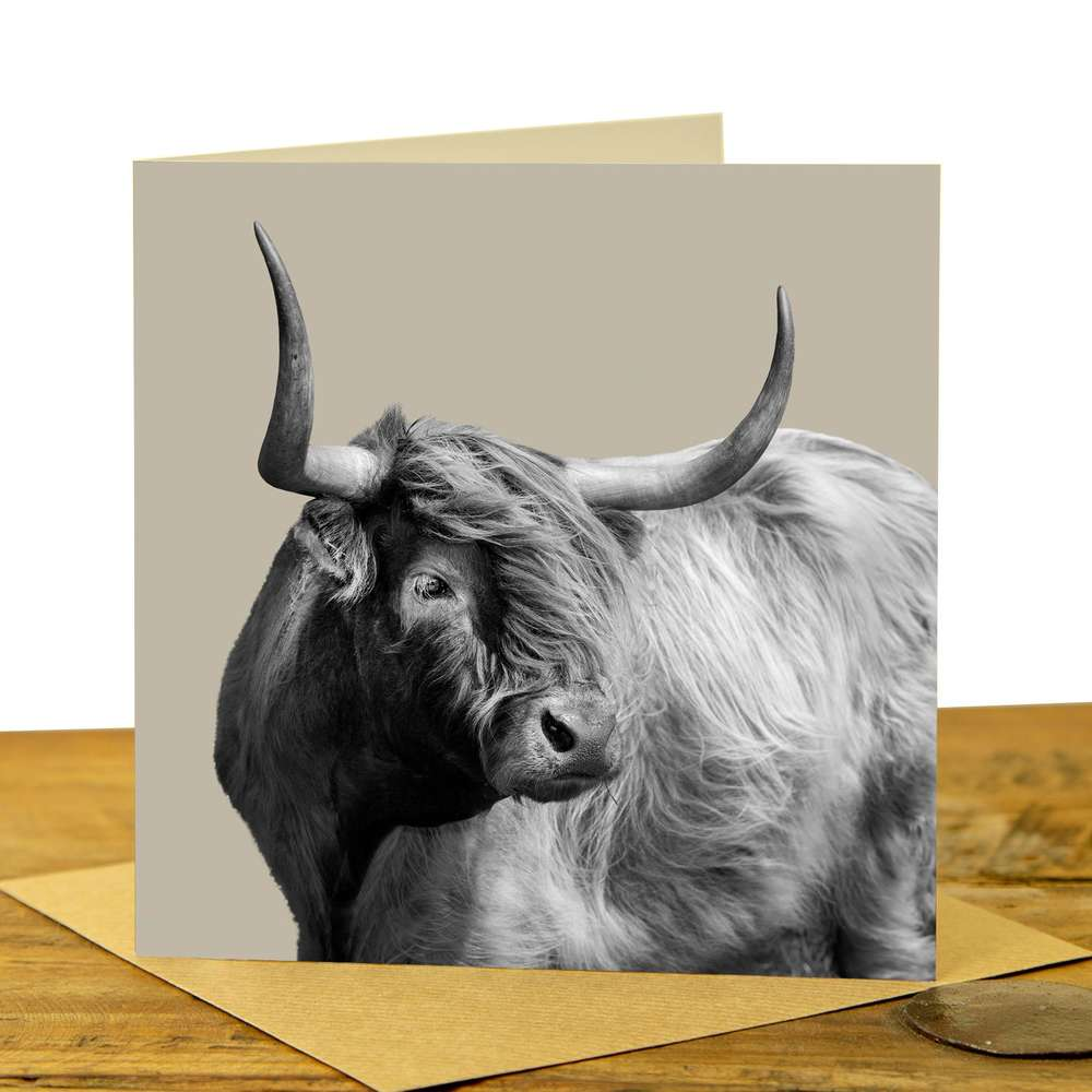 Card - Highland Cow on Sand Grey