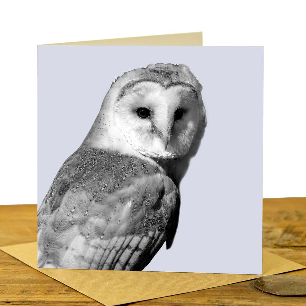 Owl Card - Barn Owl on Pale Lavender