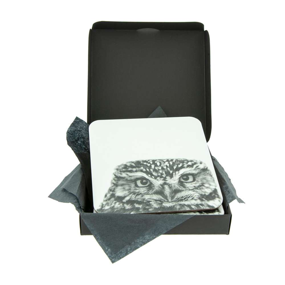 Little Owl White Coaster