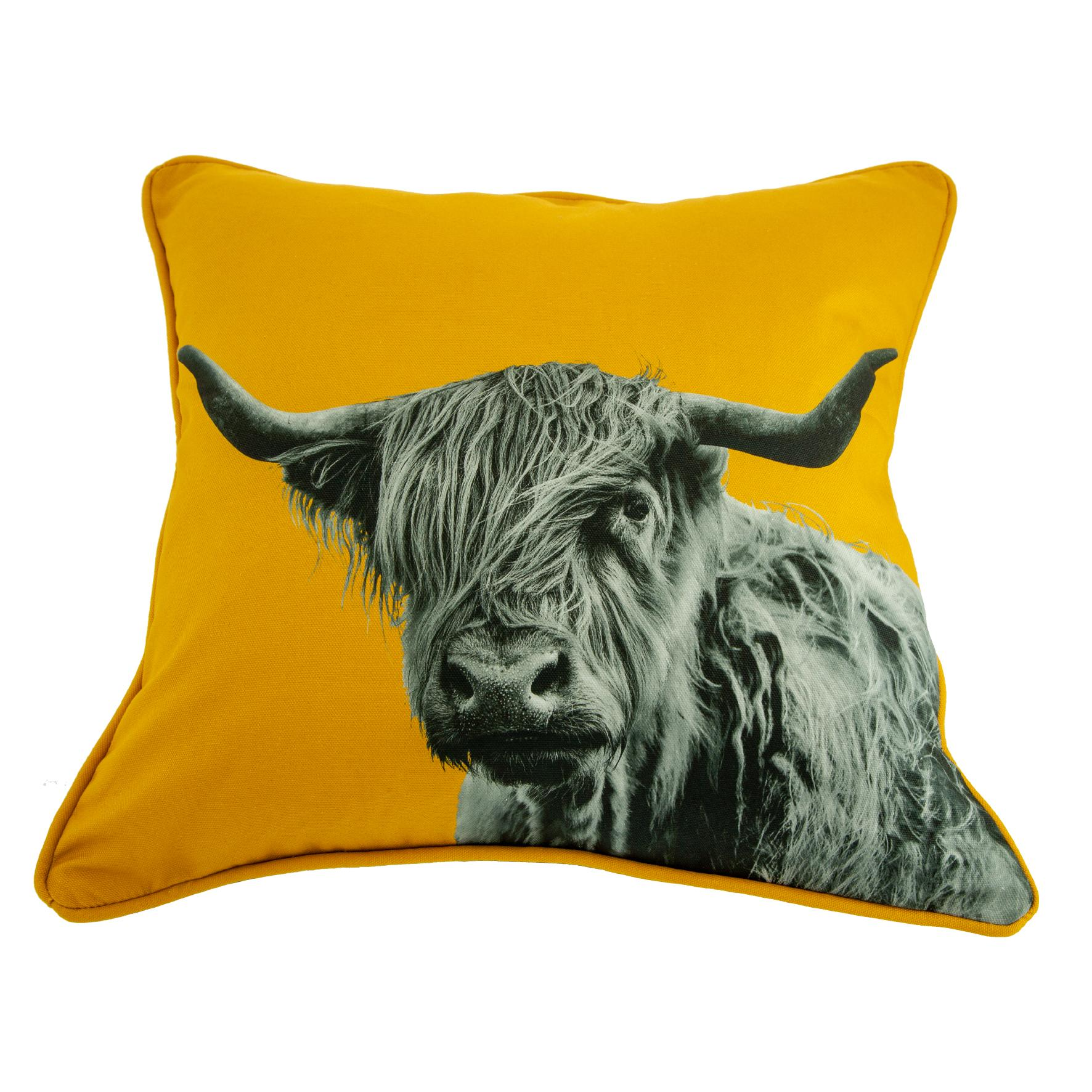 Highland Cow Cushion on Mustard