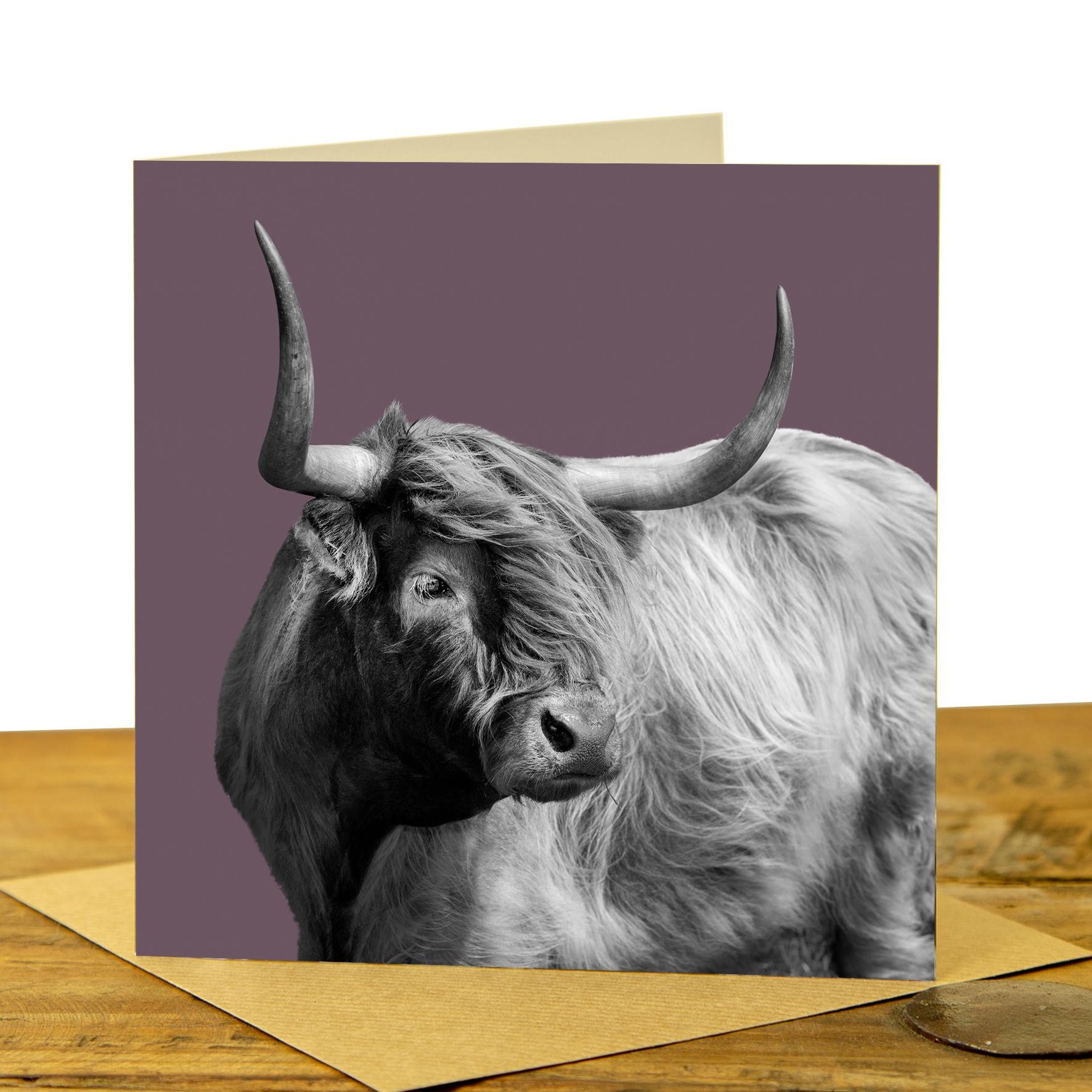 Card - Highland Cow on Dusky Pink