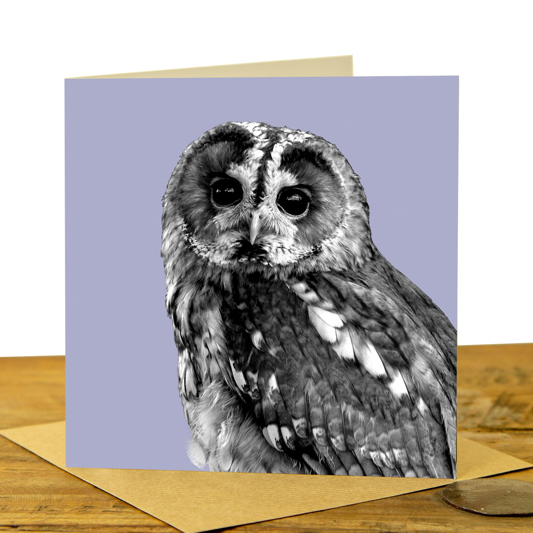 Owl Card - Tawny Owl on Lilac