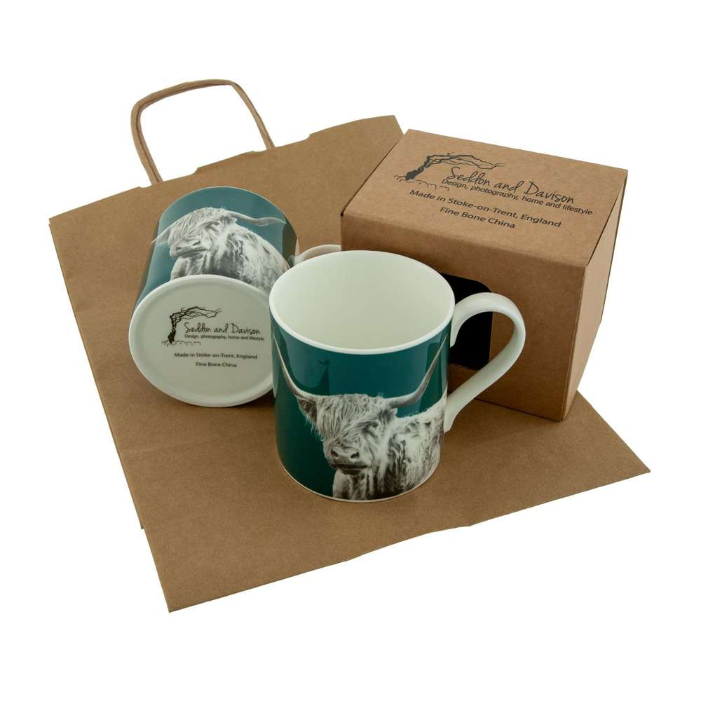 Shaggy Highland Cow Fine Bone China Mug on Teal