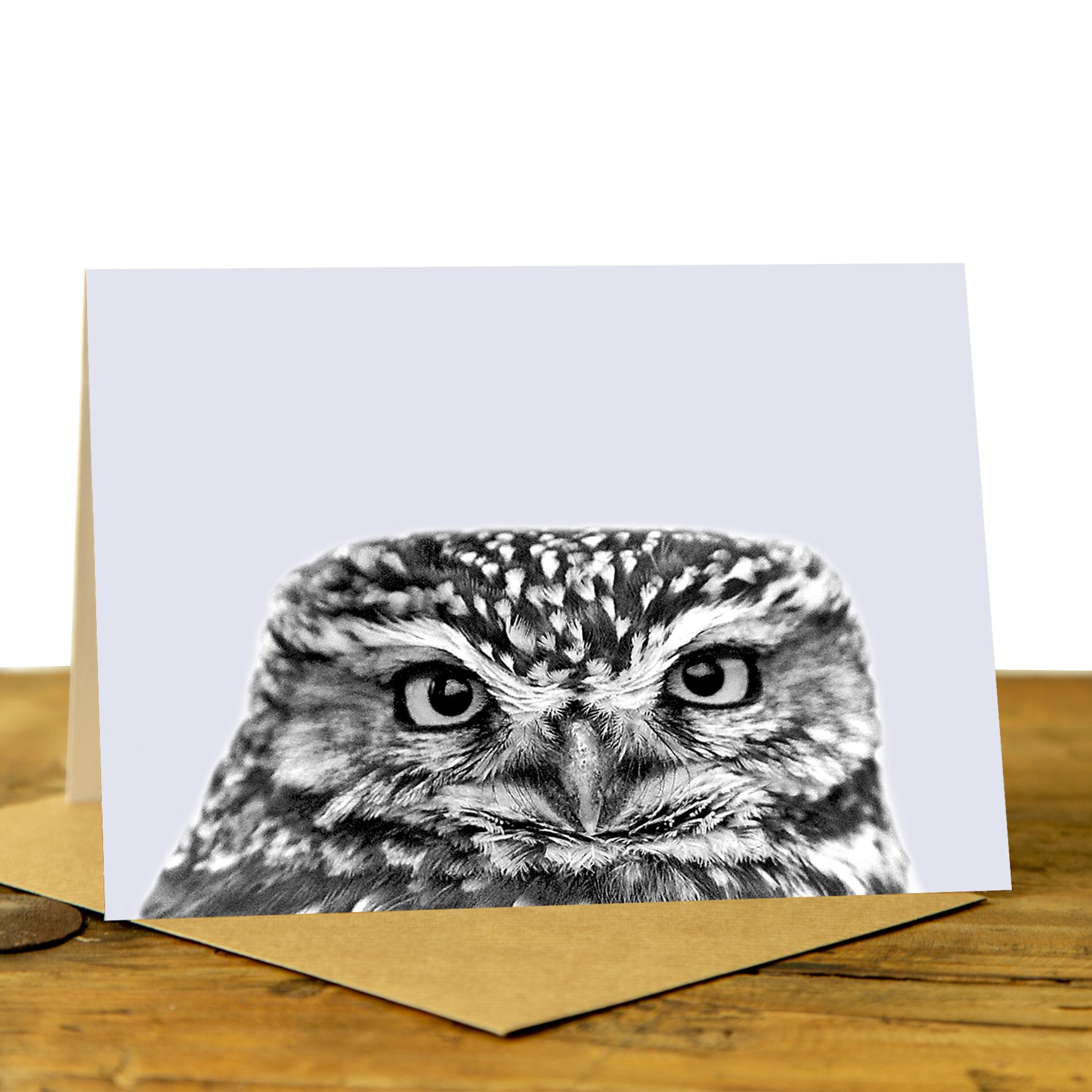 Owl Card - Little Owl on Pale Lavender Background