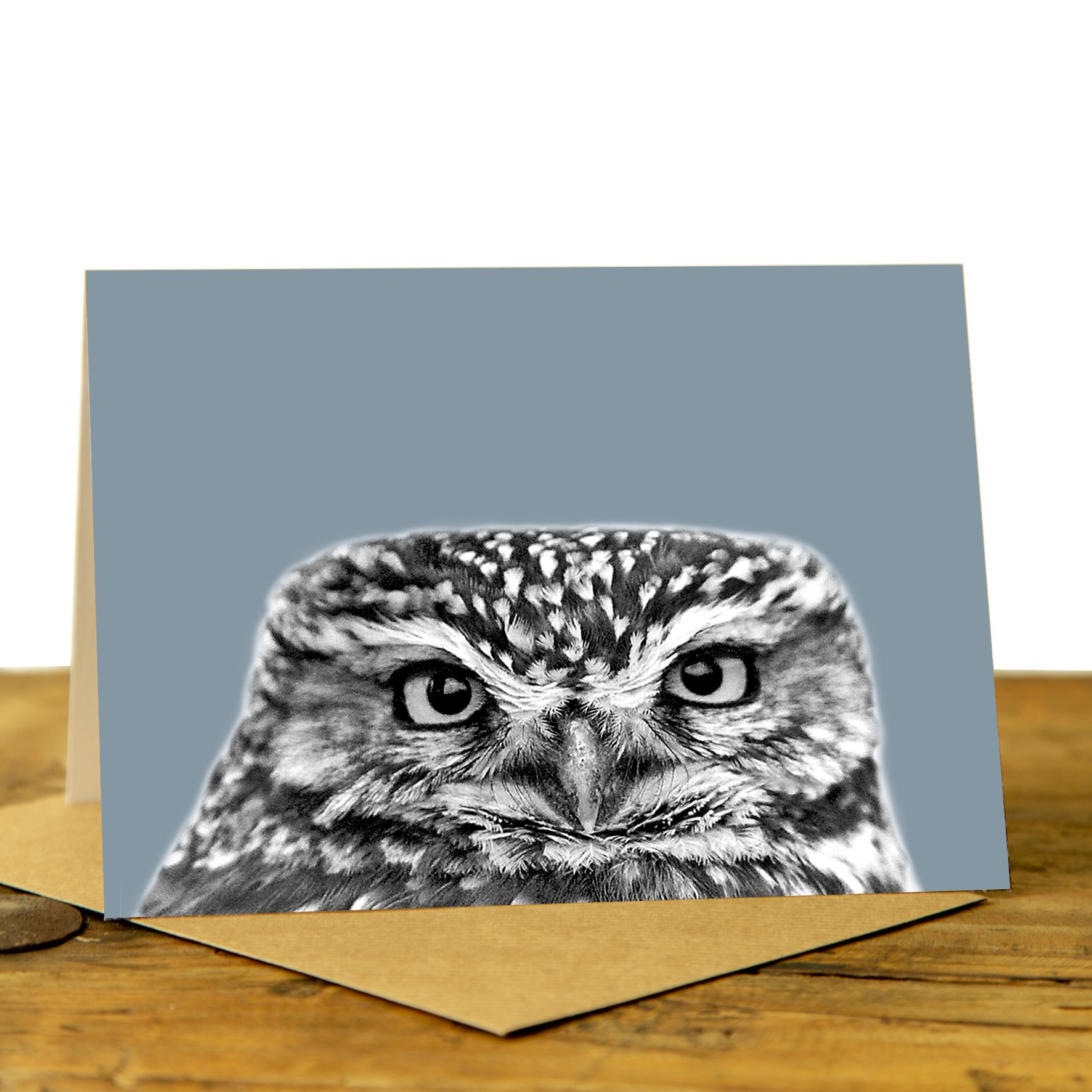 Owl Card - Little Owl on Pale Blue