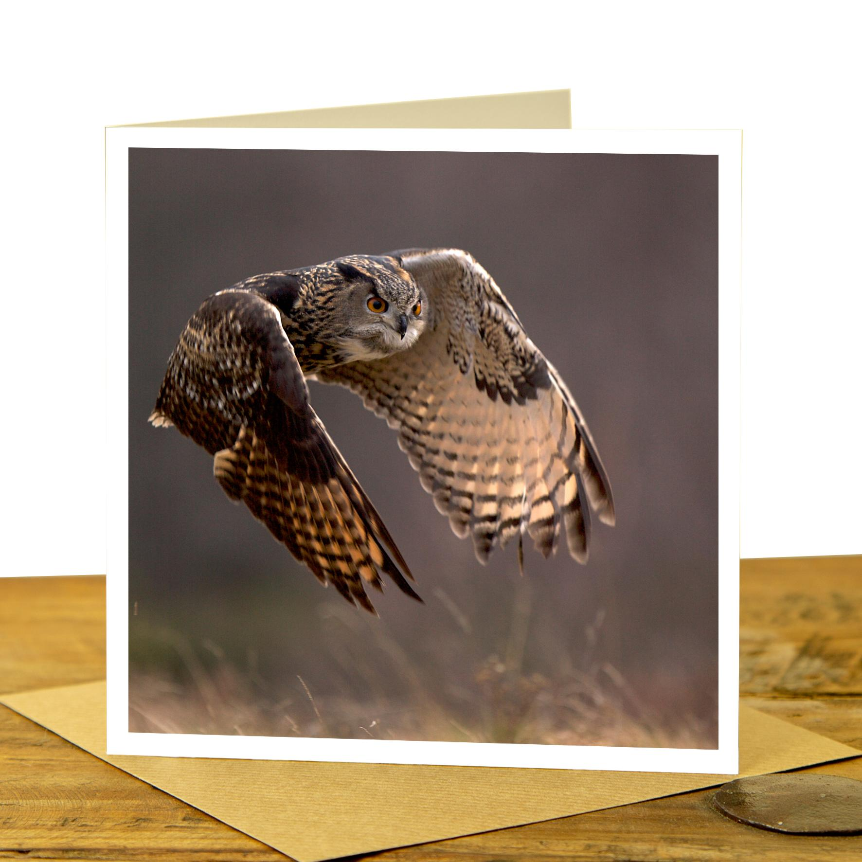 Owl Card - Eagle Owl Flying