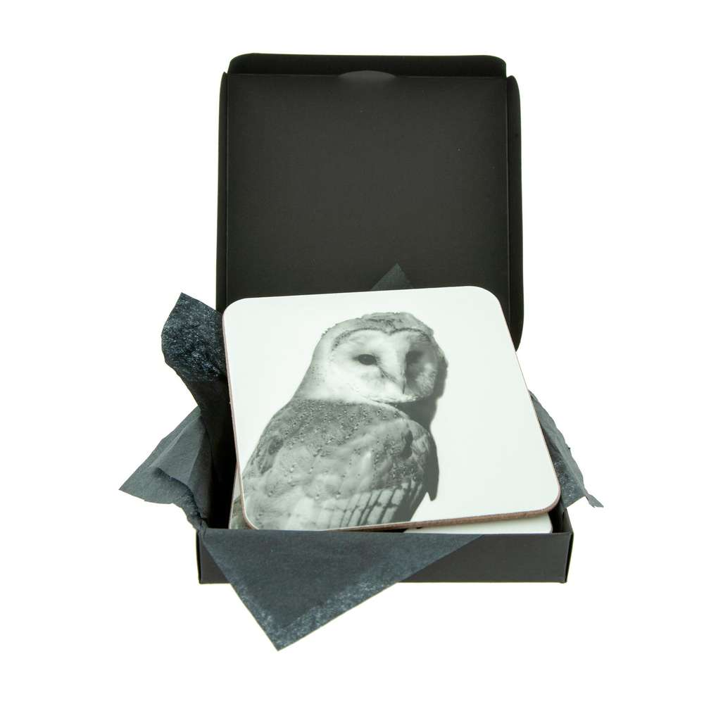 Barn Owl White Coaster