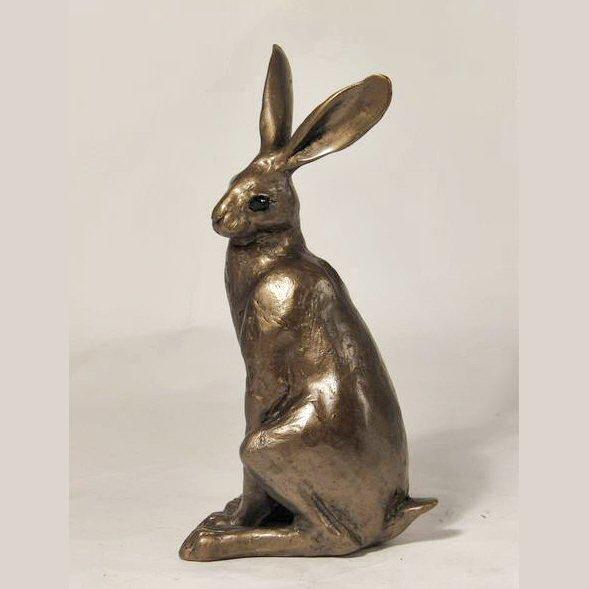 Hugo Hare  (S161) by Paul Jenkins