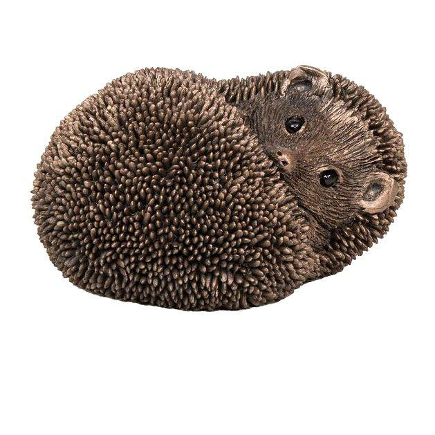 Spike - Hedgehog Resting (TM054) by Thomas Meadows