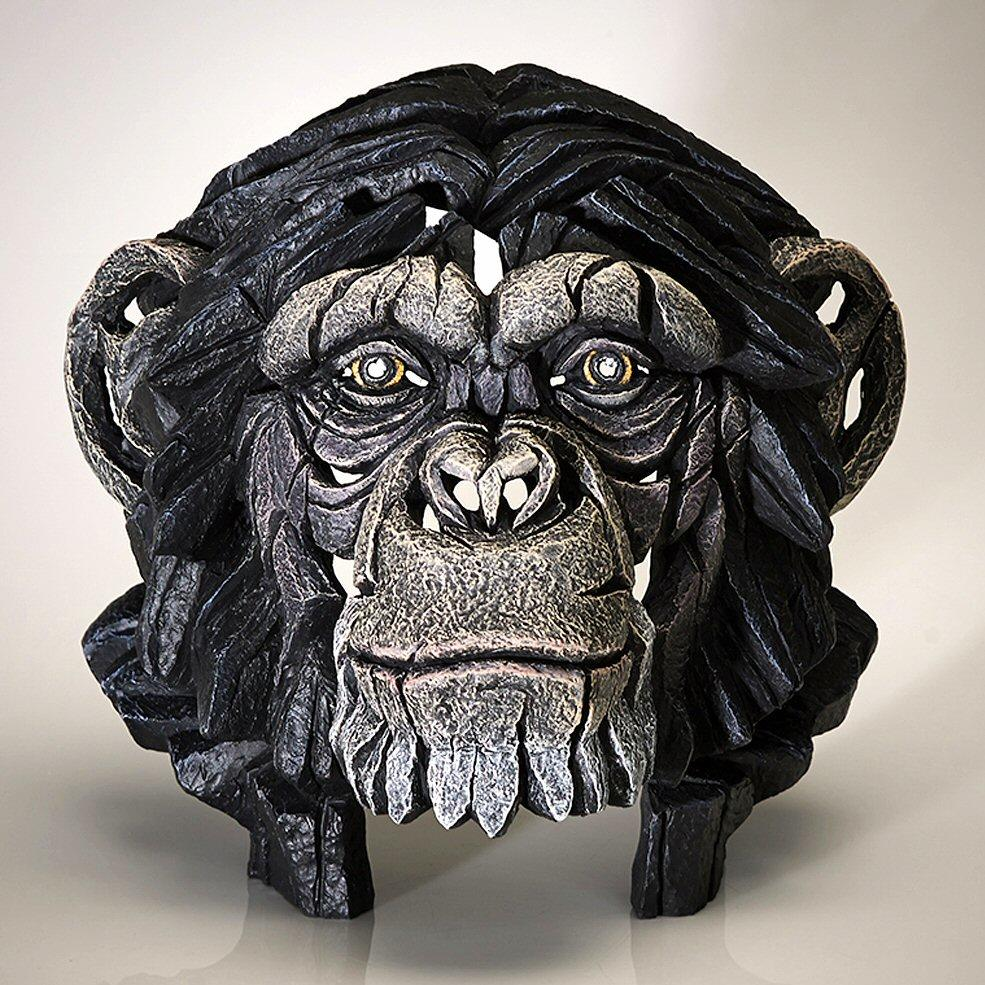 Chimpanzee Bust EDB12 EDGE by Matt Buckley