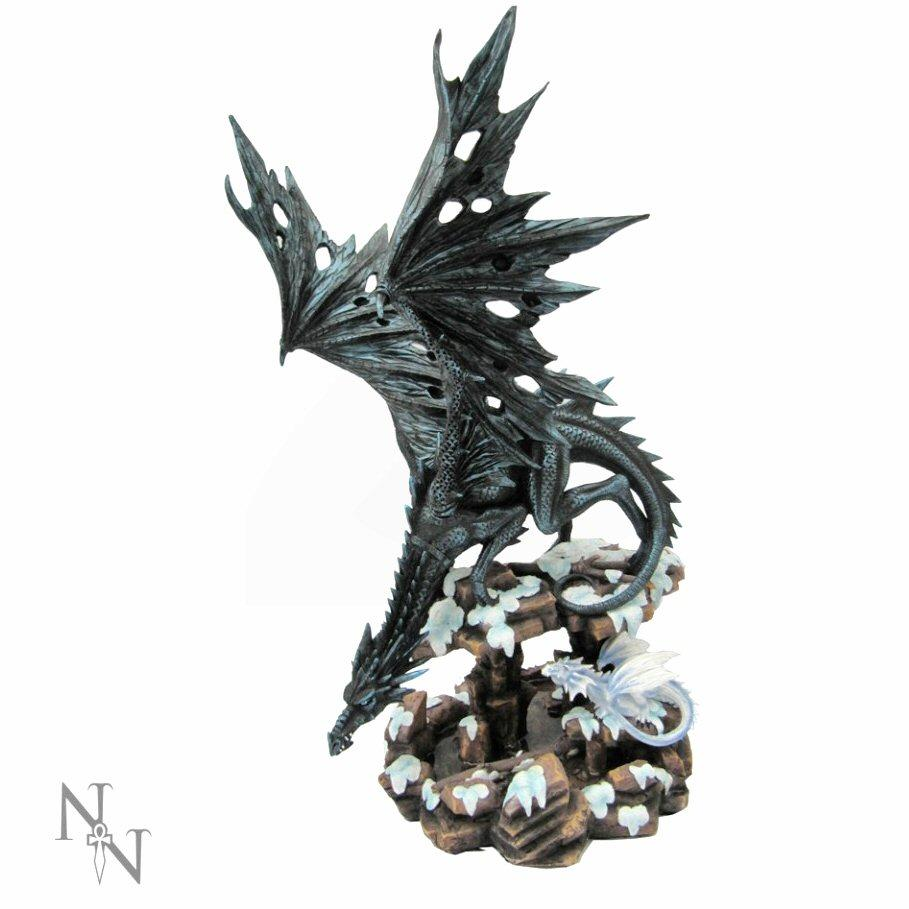 Dragons Wisdom - Dragon Figurine - Nemesis Now D0292B4