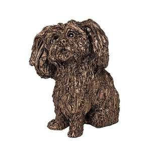 Sprout - Shiz Tzu Puppy - Bronze Dog Sculpture - Veronica Ballan VB084