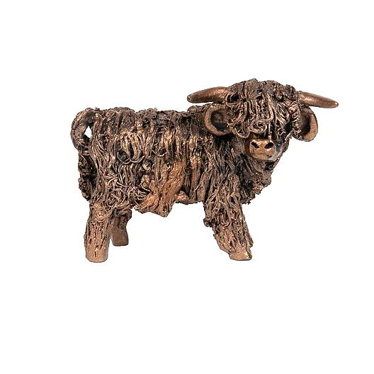 Malcolm Highland Bull Standing