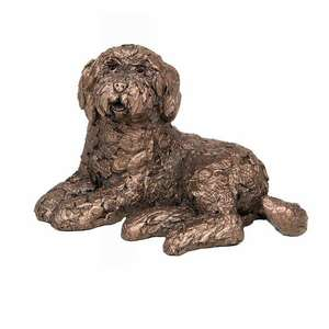 Koko - Labradoodle Lying AT039 by Adrian Tinsley