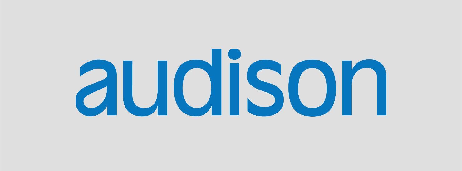 audison authorised dealer