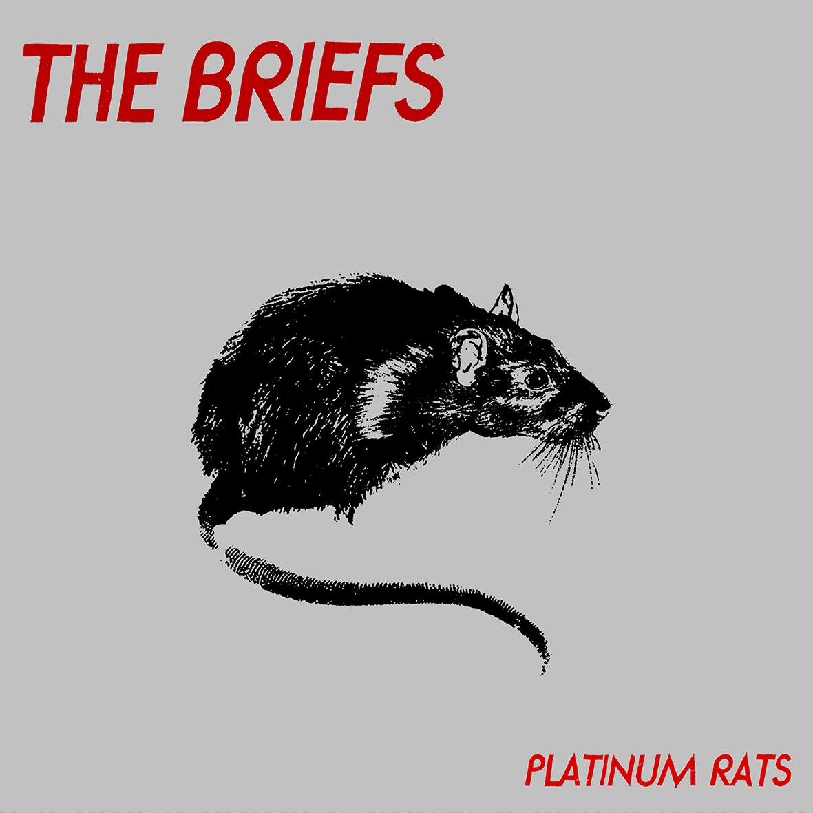 The Briefs - Platinum Rats
