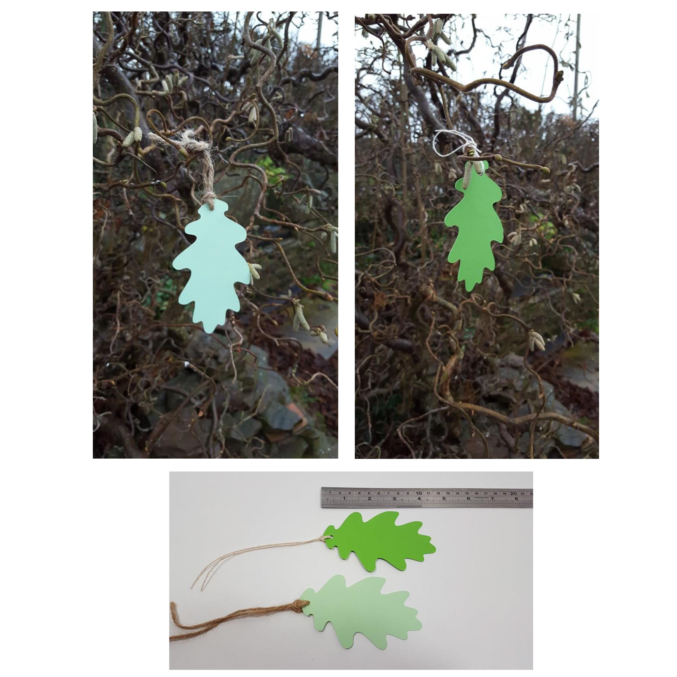 Oak leaf tags