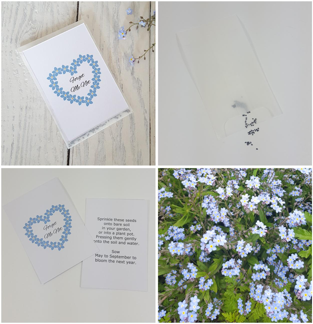 Funeral Favours Forget me not seed