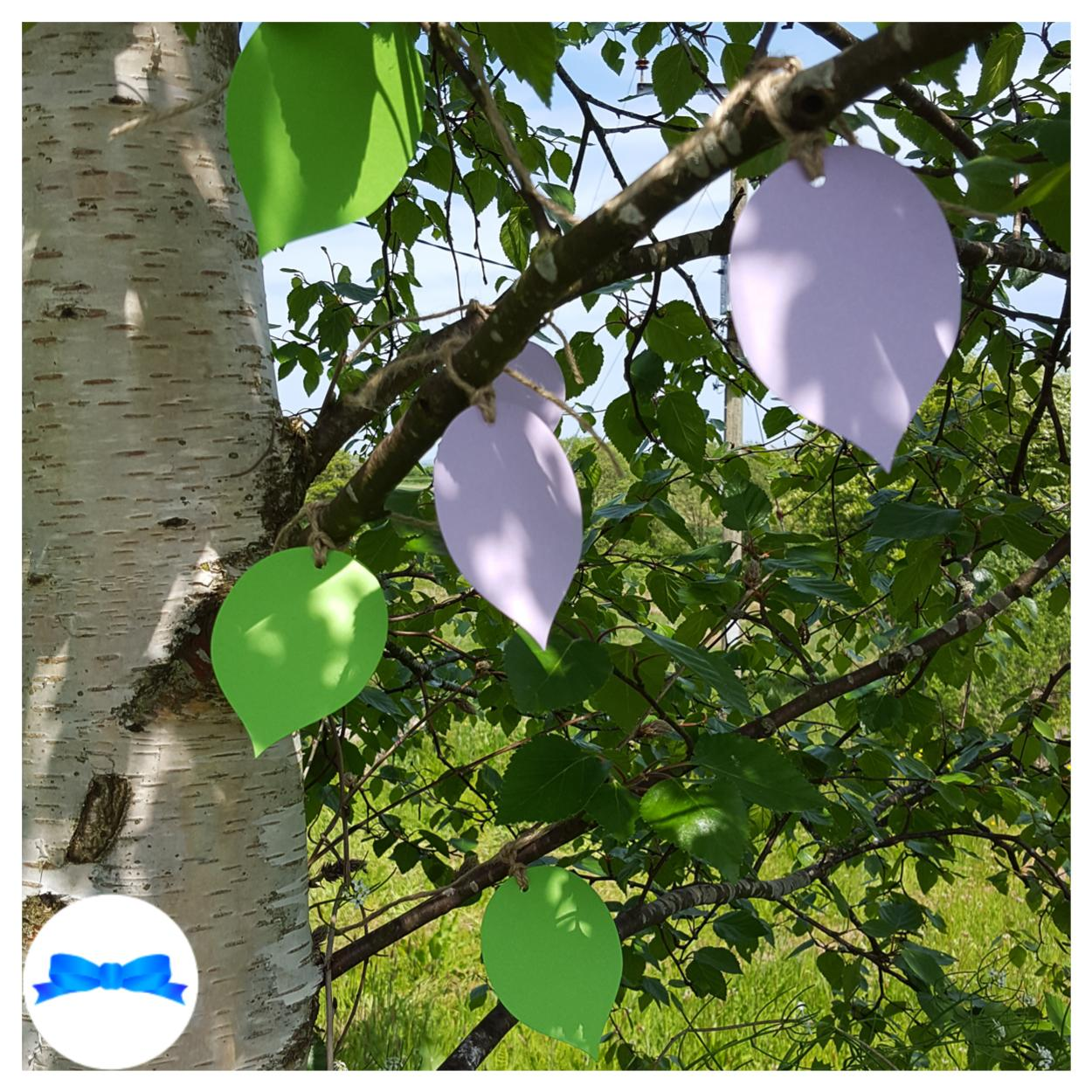 beech leaf tags