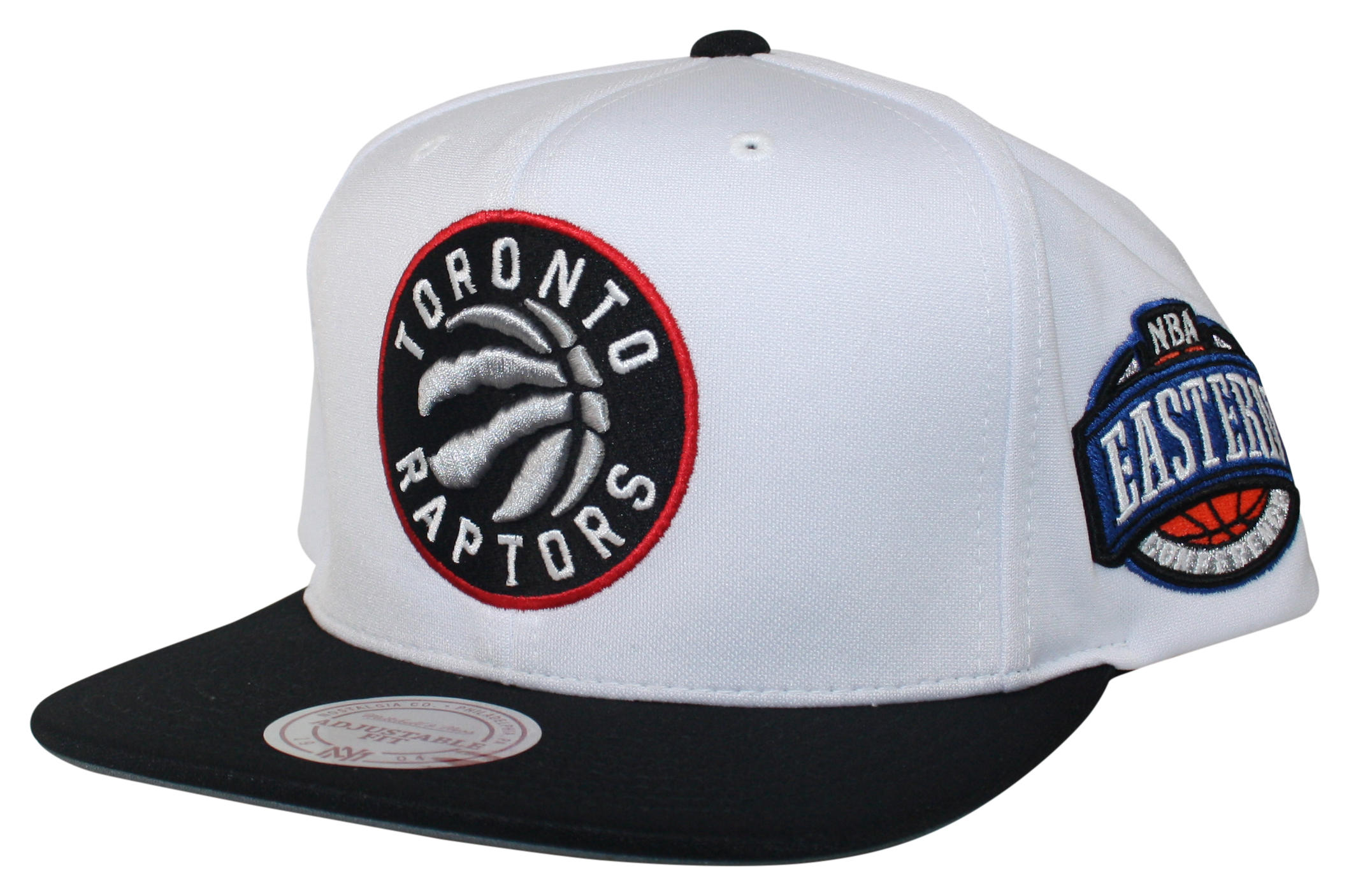d9ee9396c41f8 D Memory Snapback Toronto Raptors