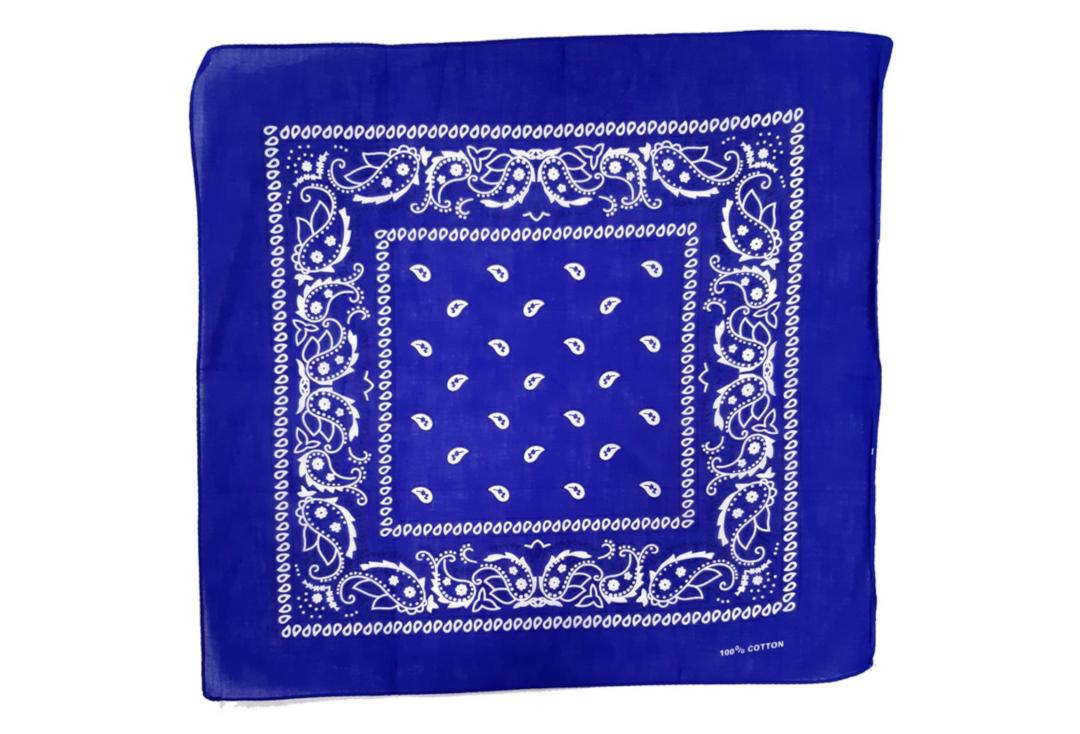 Void Clothing | Royal Blue Paisley Cotton Bandana