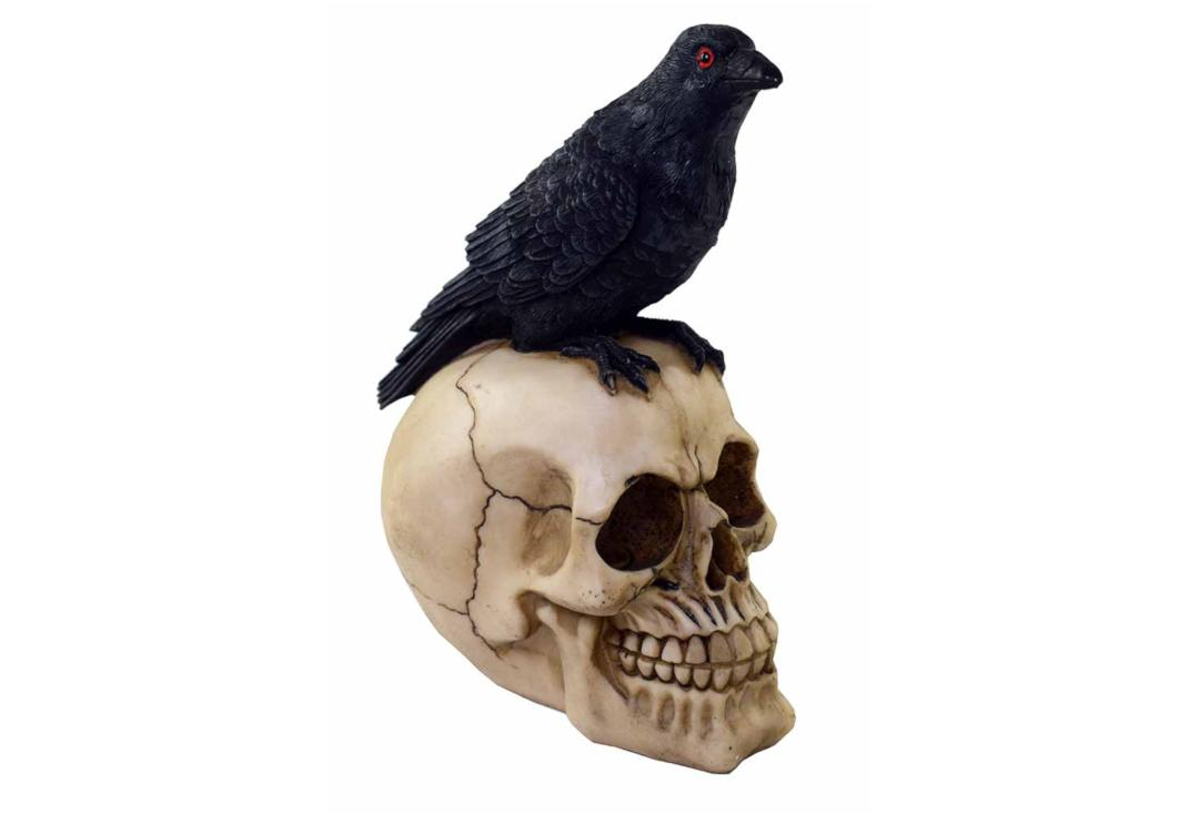 Void Clothing | Large Crow Skull Decoration