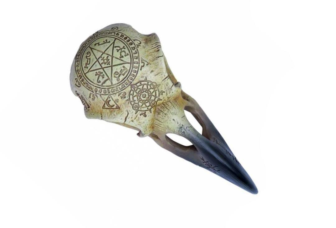 Alchemy Gothic | Omega Raven Skull Decoration